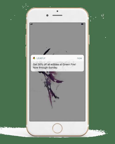 Push-Notif-phone-mockup.png